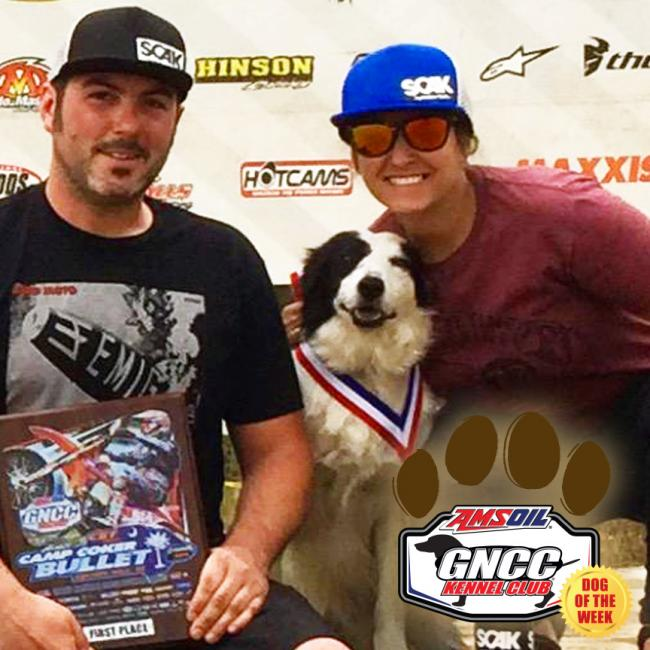 At 15 years young Lexi is the best pit dog ever! The Border collie from Tennessee wont let the race van outta sight in fear that she might miss the next trip. She brought good luck to long time GNCC competitor Justin Ramsey Sunday at Camp Coker as he took his first win in the Vet B class.